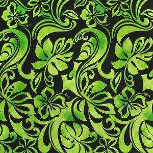 fn170803_black-green
