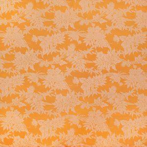 fn170809_orange