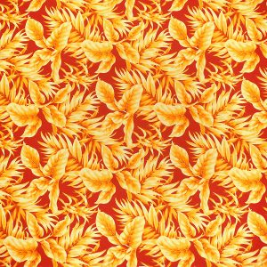 fn170901_orange