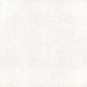 fn170903_white