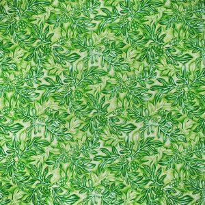 fn171101_green