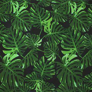 fn171107_black-green