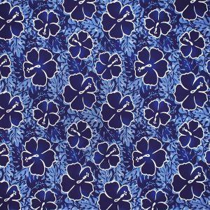 fn171111_blue