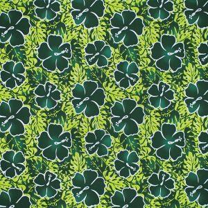 fn171111_green