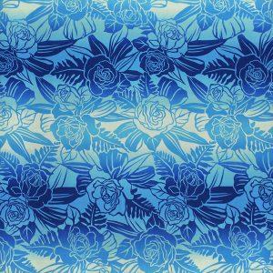 fn180606_blue